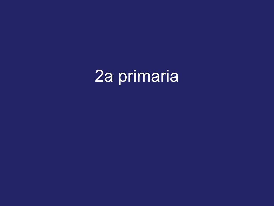 2a primaria