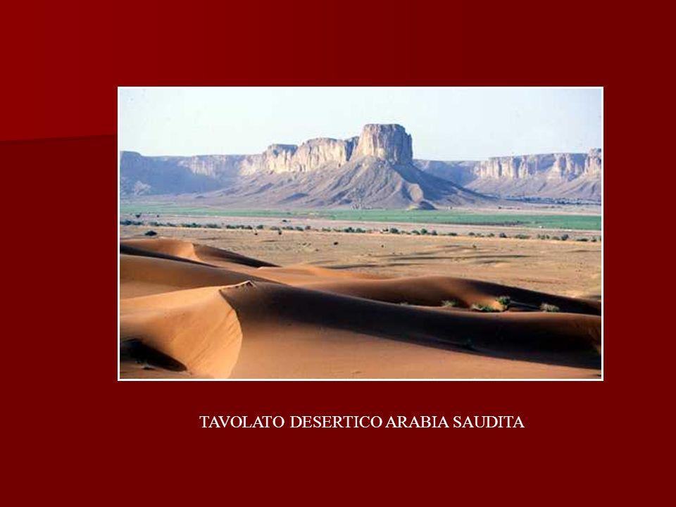 TAVOLATO DESERTICO ARABIA SAUDITA