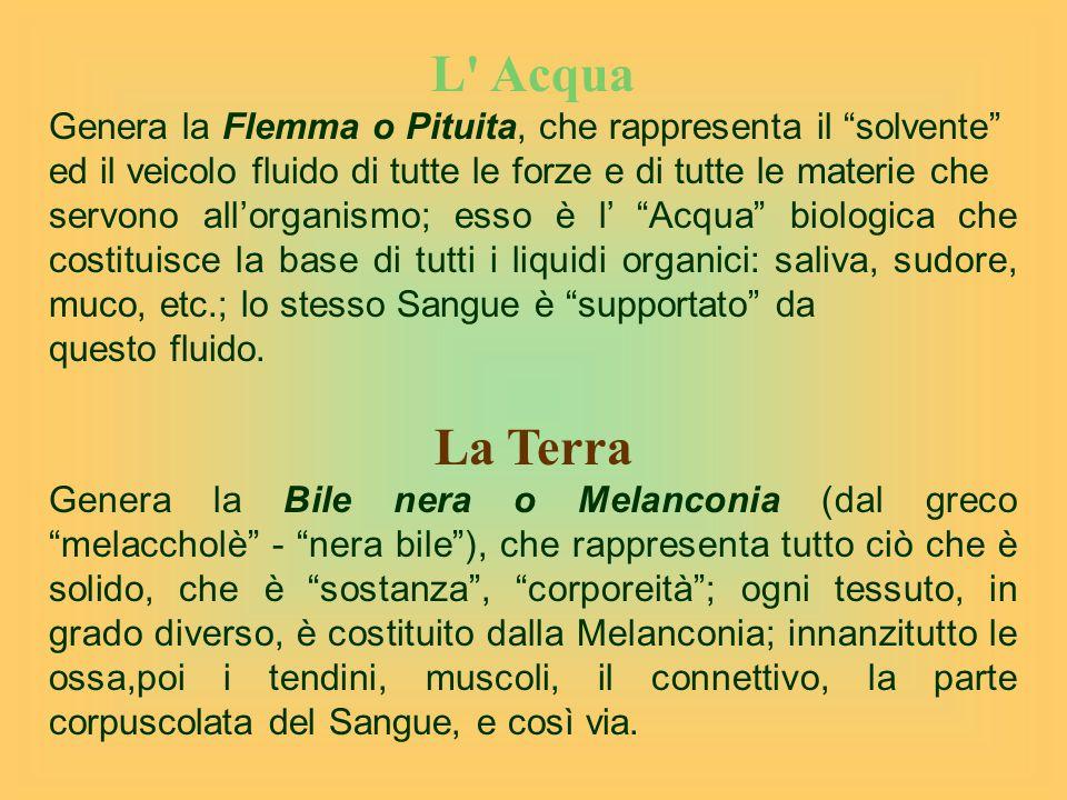 L Acqua Genera la Flemma o Pituita, che rappresenta il solvente ed il veicolo fluido di tutte le forze e di tutte le materie che.