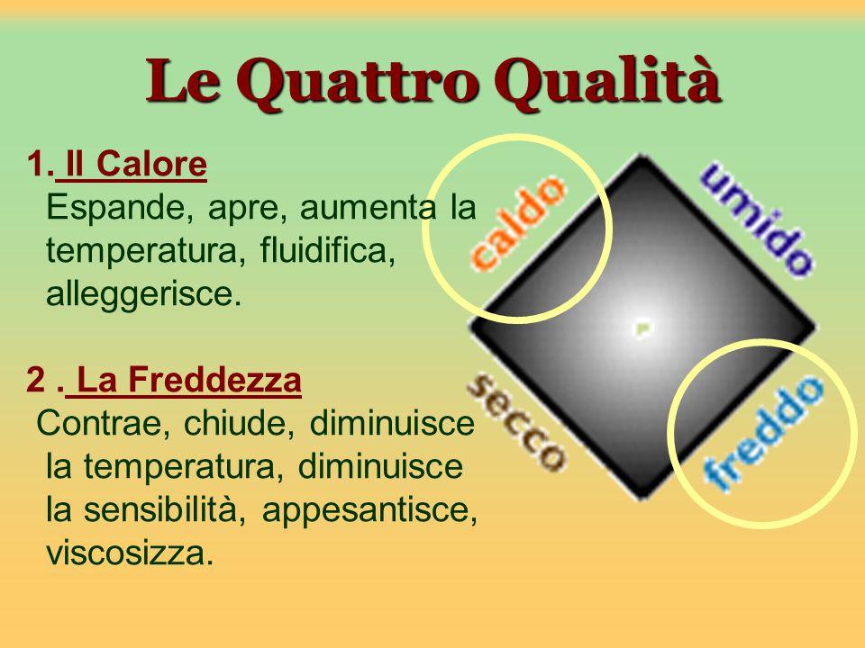 Le Quattro Qualità 1. Il Calore Espande, apre, aumenta la