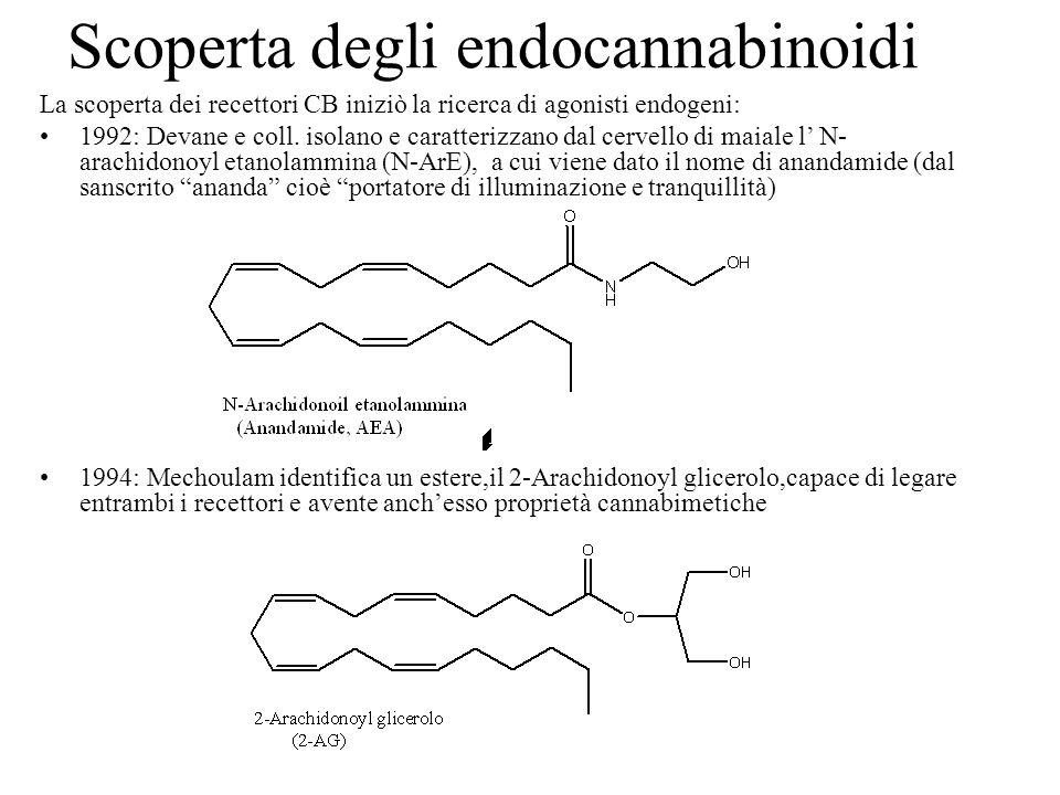 Scoperta degli endocannabinoidi