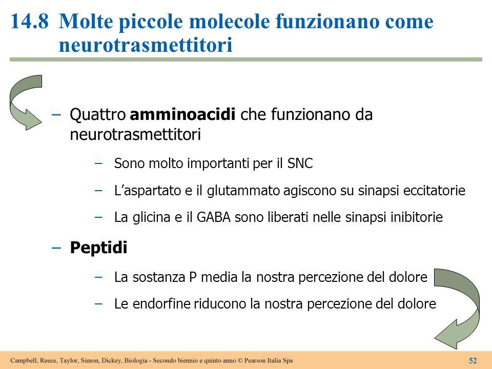 14.8 Molte piccole molecole funzionano come neurotrasmettitori