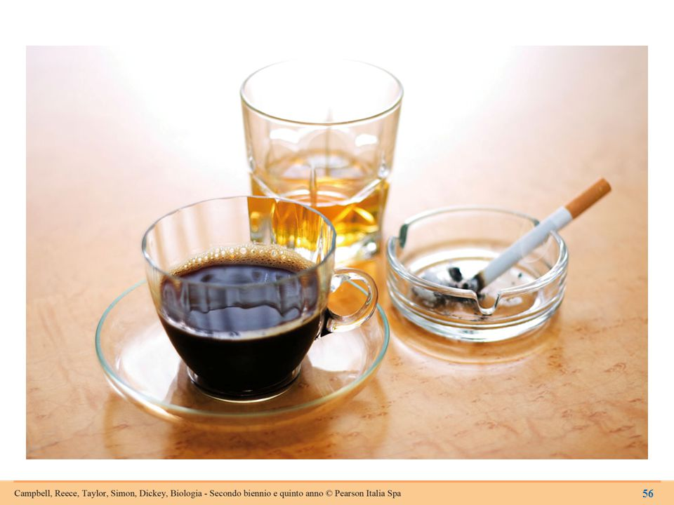 Figura 14.9 Alcol, nicotina e caffeina sono tutte sostanze che alterano gli effetti dei neurotrasmettitori.