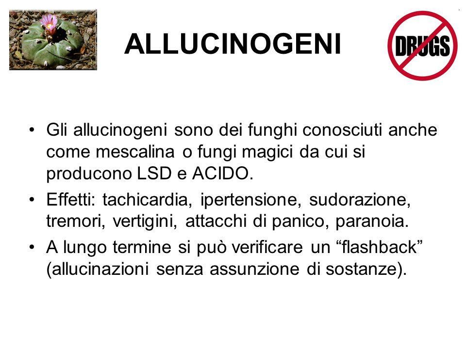ALLUCINOGENI Gli allucinogeni sono dei funghi conosciuti anche come mescalina o fungi magici da cui si producono LSD e ACIDO.