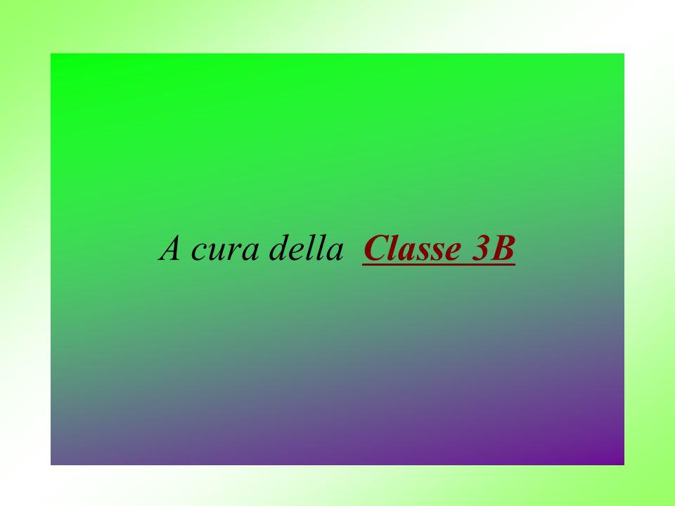 A cura della Classe 3B