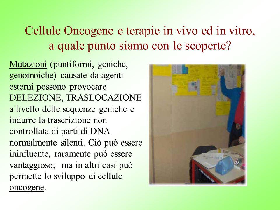 Cellule Oncogene e terapie in vivo ed in vitro, a quale punto siamo con le scoperte