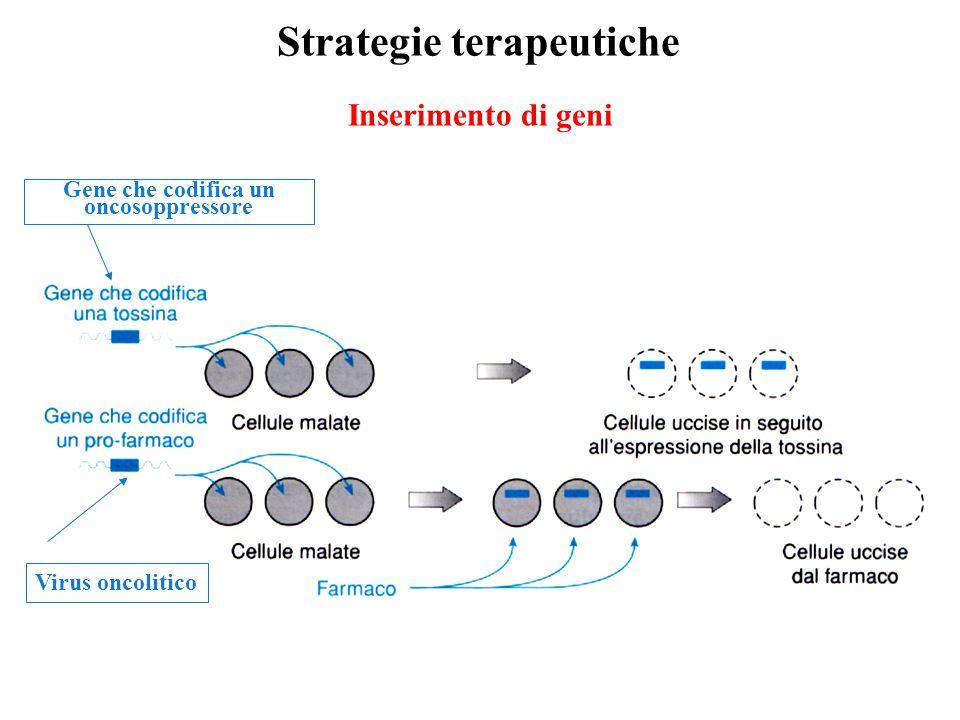 Gene che codifica un oncosoppressore
