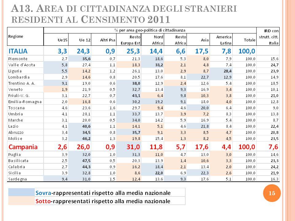 A13. Area di cittadinanza degli stranieri residenti al Censimento 2011
