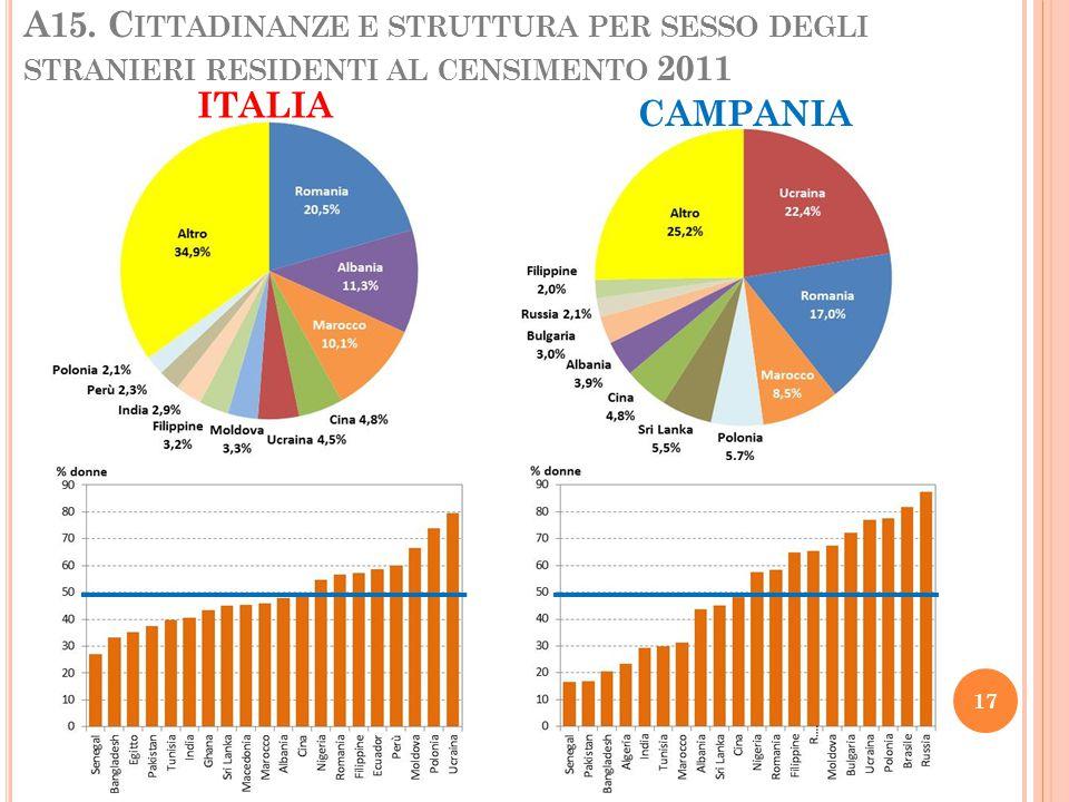 A15. Cittadinanze e struttura per sesso degli stranieri residenti al censimento 2011