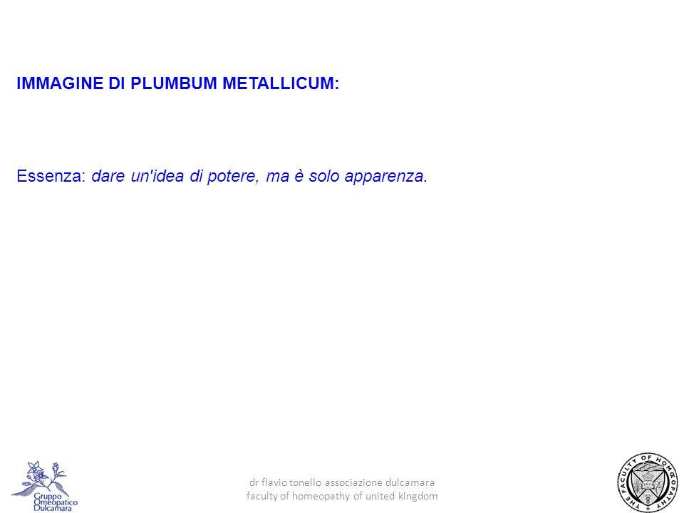 IMMAGINE DI PLUMBUM METALLICUM: