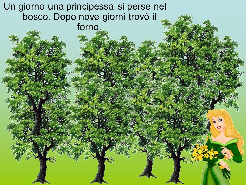 Un giorno una principessa si perse nel bosco