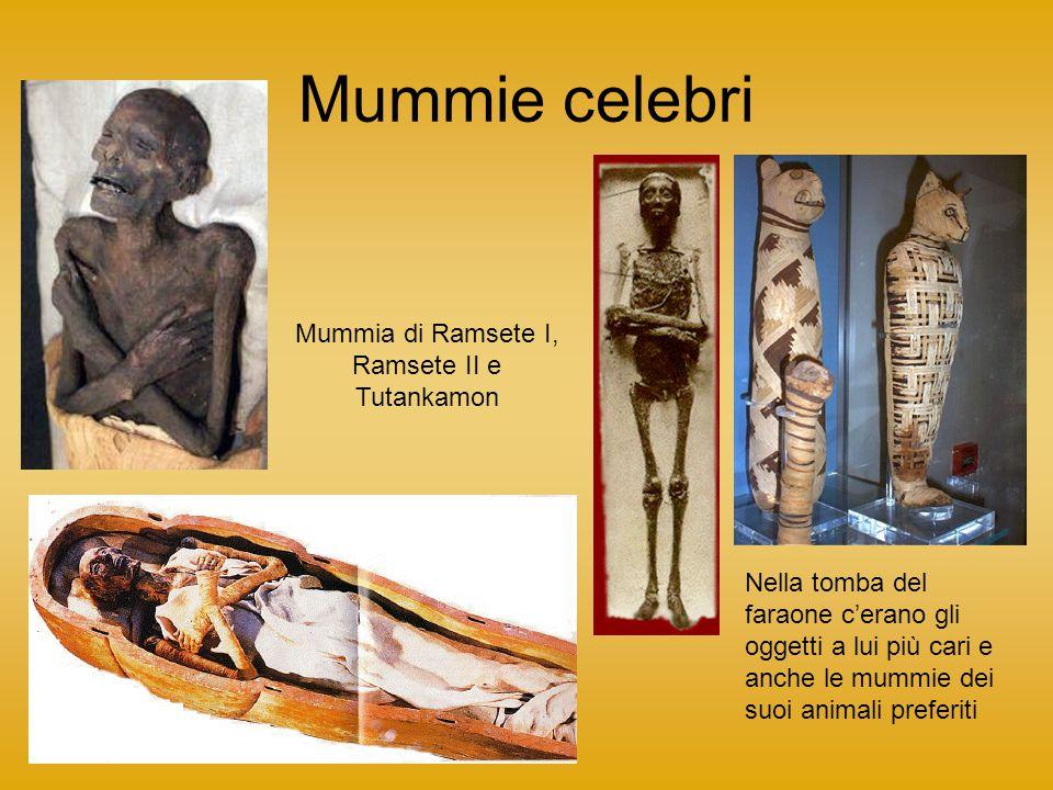 Mummia di Ramsete I, Ramsete II e Tutankamon