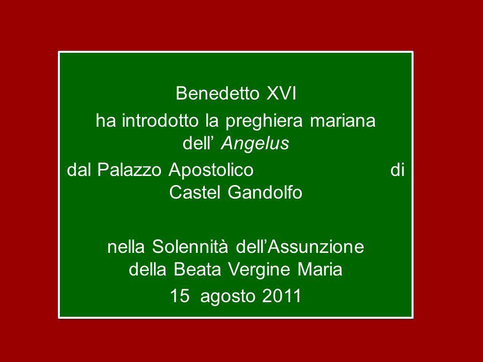 Benedetto XVI ha introdotto la preghiera mariana dell' Angelus dal Palazzo Apostolico di Castel Gandolfo nella Solennità dell'Assunzione della Beata Vergine Maria 15 agosto 2011