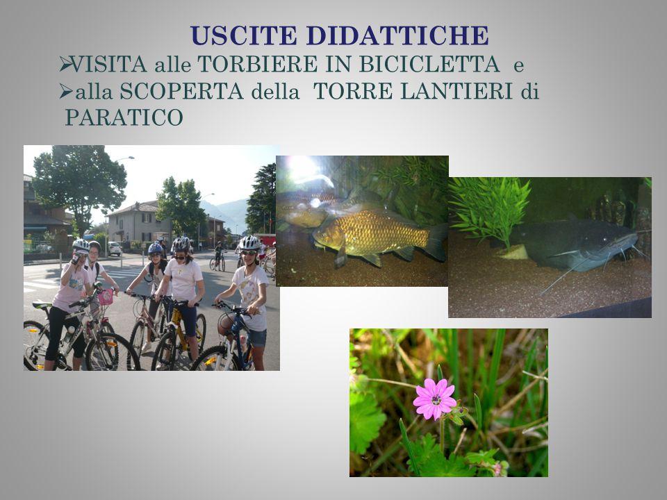 USCITE DIDATTICHE VISITA alle TORBIERE IN BICICLETTA e