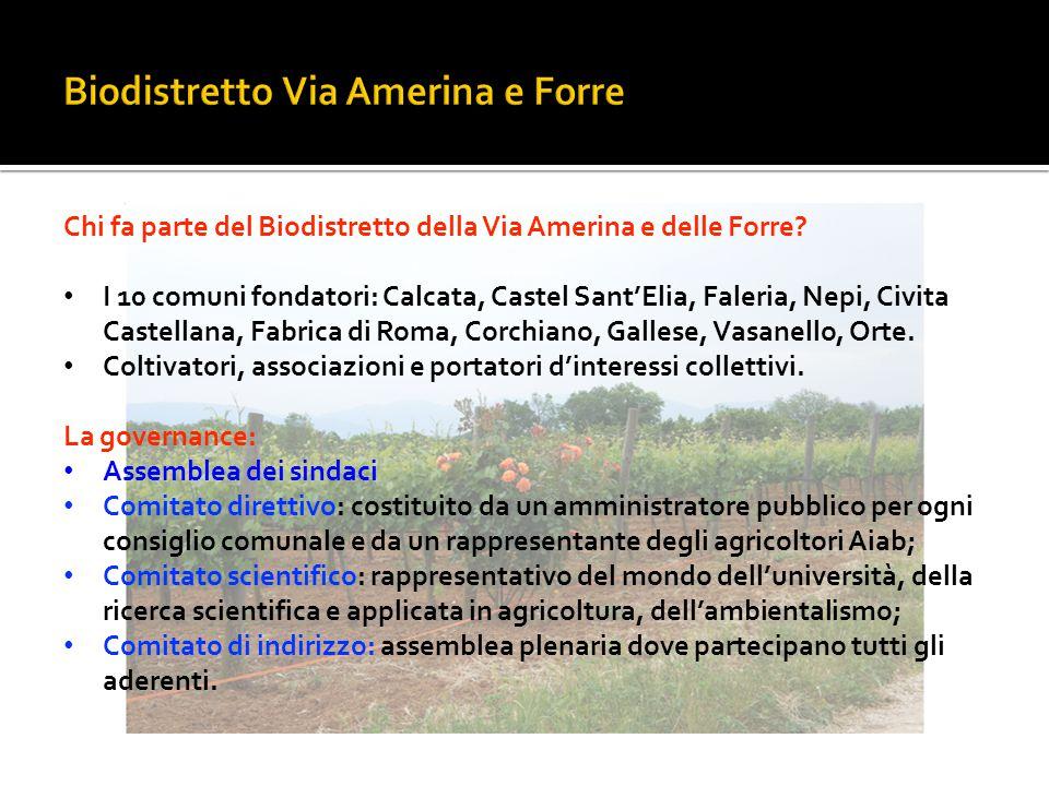 Biodistretto Via Amerina e Forre