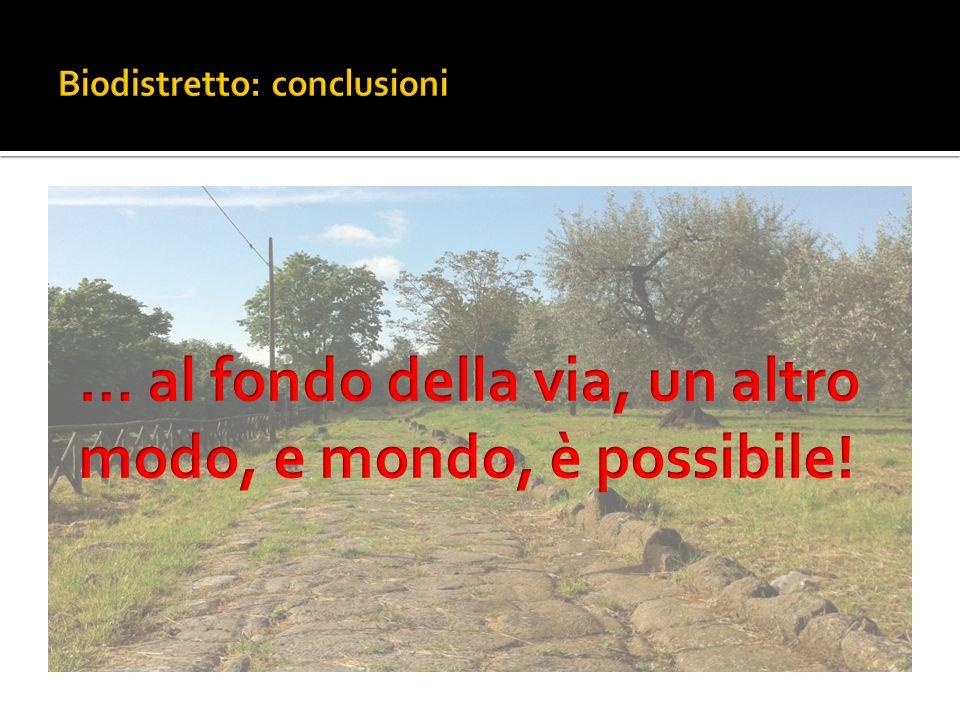 Biodistretto: conclusioni