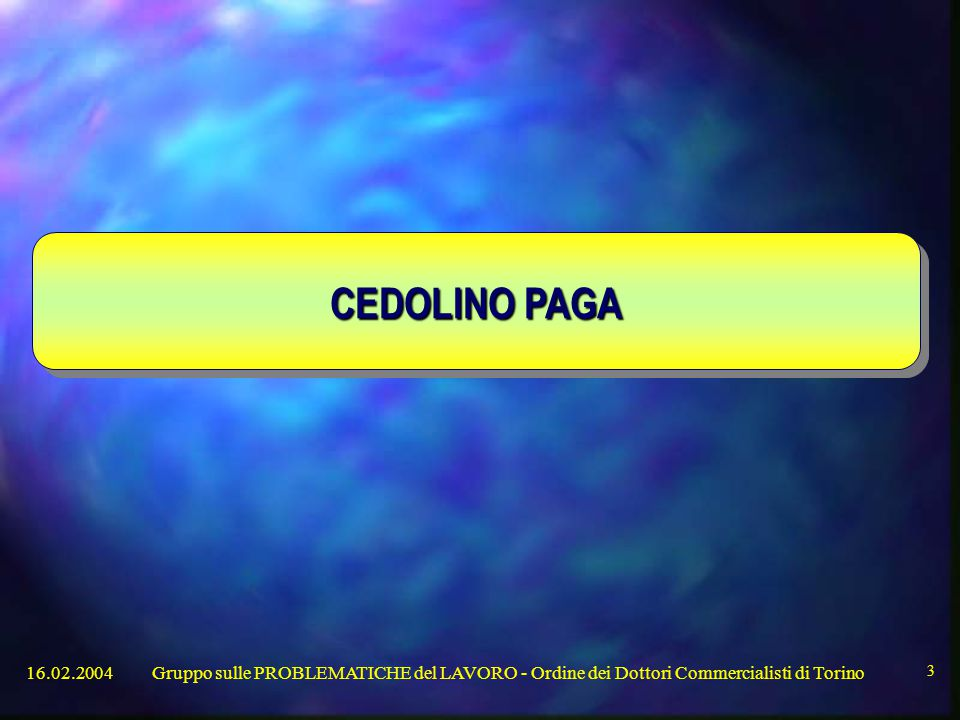 CEDOLINO PAGA 16.02.2004.