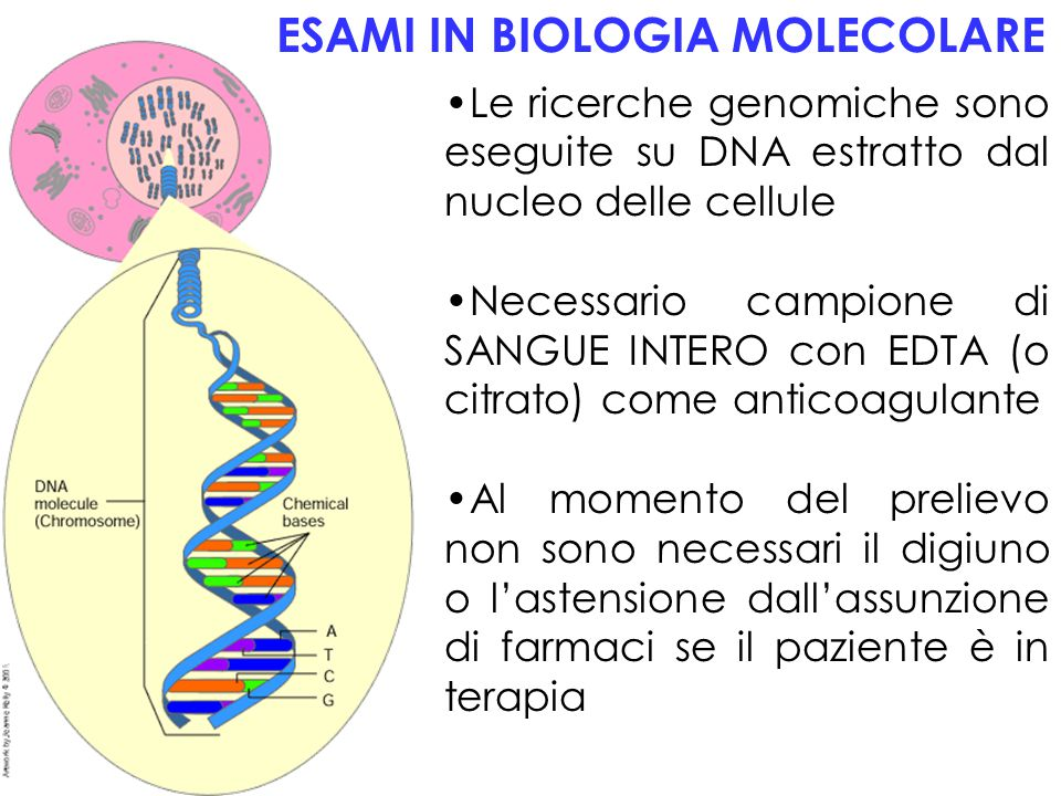 ESAMI IN BIOLOGIA MOLECOLARE