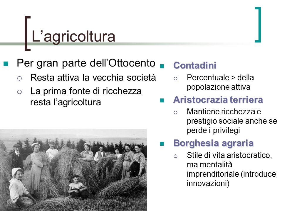 L'agricoltura Per gran parte dell'Ottocento Contadini
