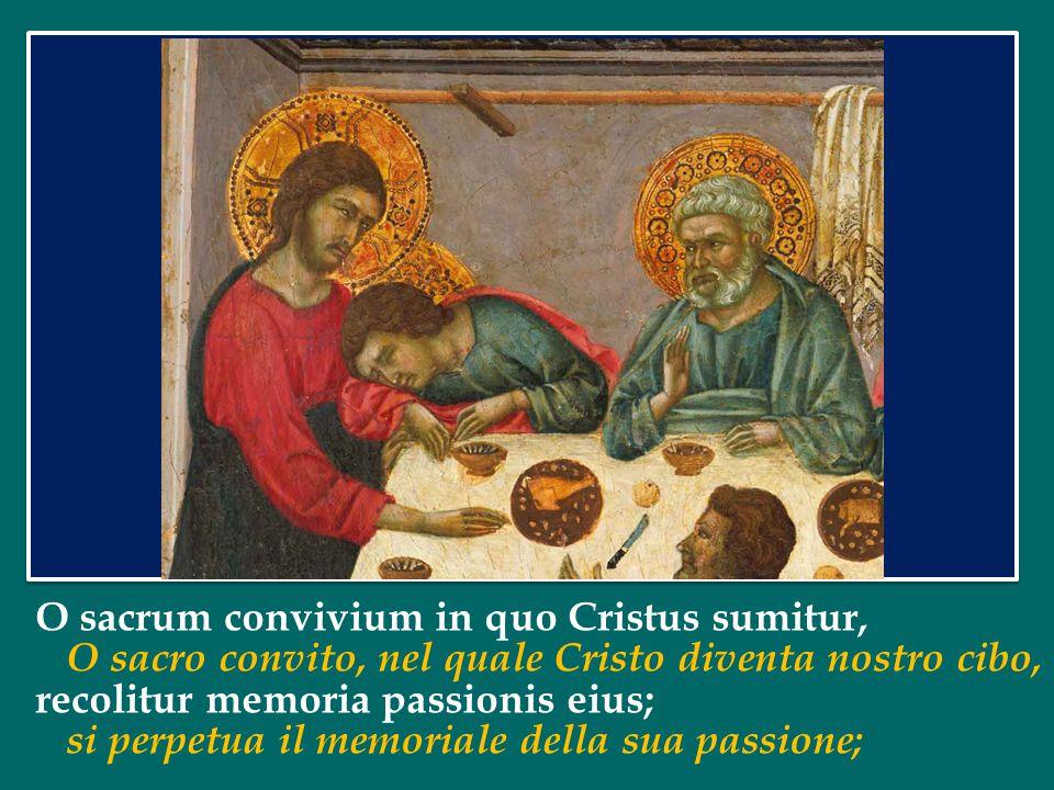 O sacrum convivium in quo Cristus sumitur,
