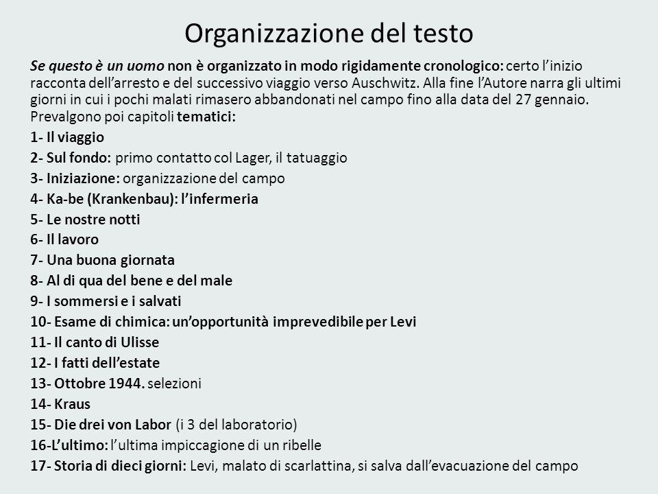 Organizzazione del testo