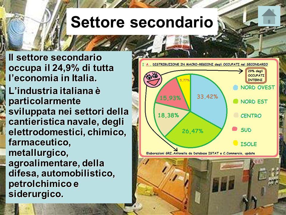 Settore secondario Il settore secondario occupa il 24,9% di tutta l'economia in Italia.