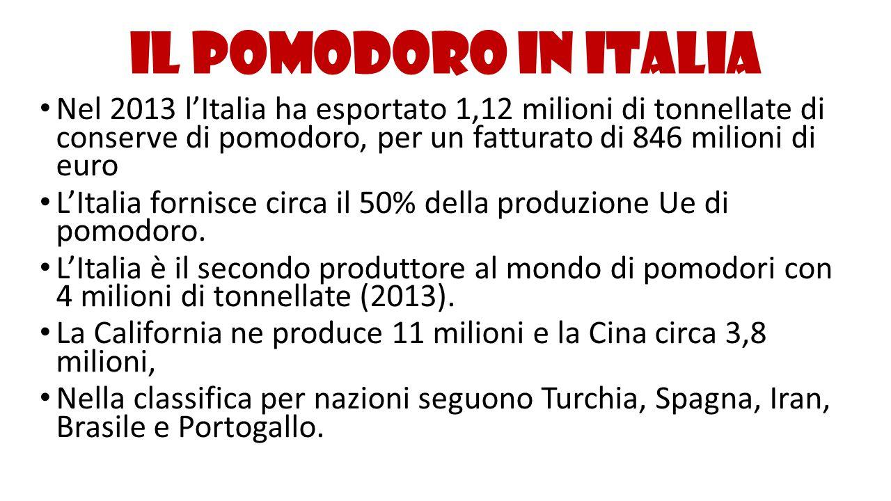 Il pomodoro in Italia Nel 2013 l'Italia ha esportato 1,12 milioni di tonnellate di conserve di pomodoro, per un fatturato di 846 milioni di euro.