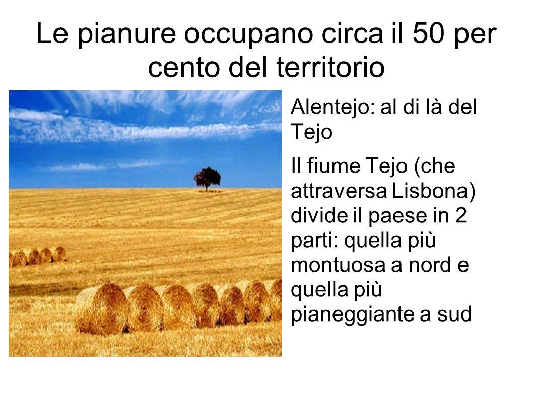Le pianure occupano circa il 50 per cento del territorio