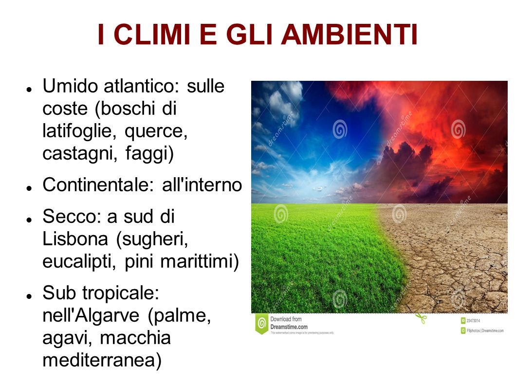 I CLIMI E GLI AMBIENTI Umido atlantico: sulle coste (boschi di latifoglie, querce, castagni, faggi)
