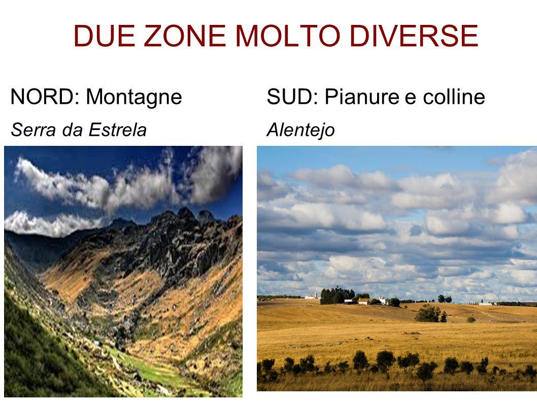 DUE ZONE MOLTO DIVERSE NORD: Montagne SUD: Pianure e colline