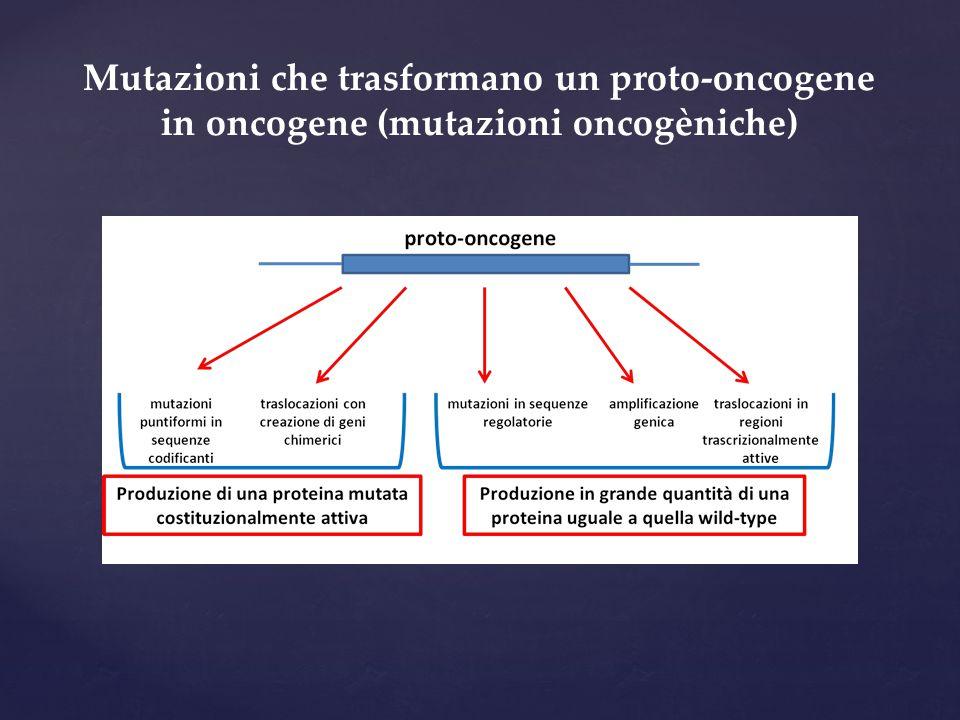 Mutazioni che trasformano un proto-oncogene in oncogene (mutazioni oncogèniche)