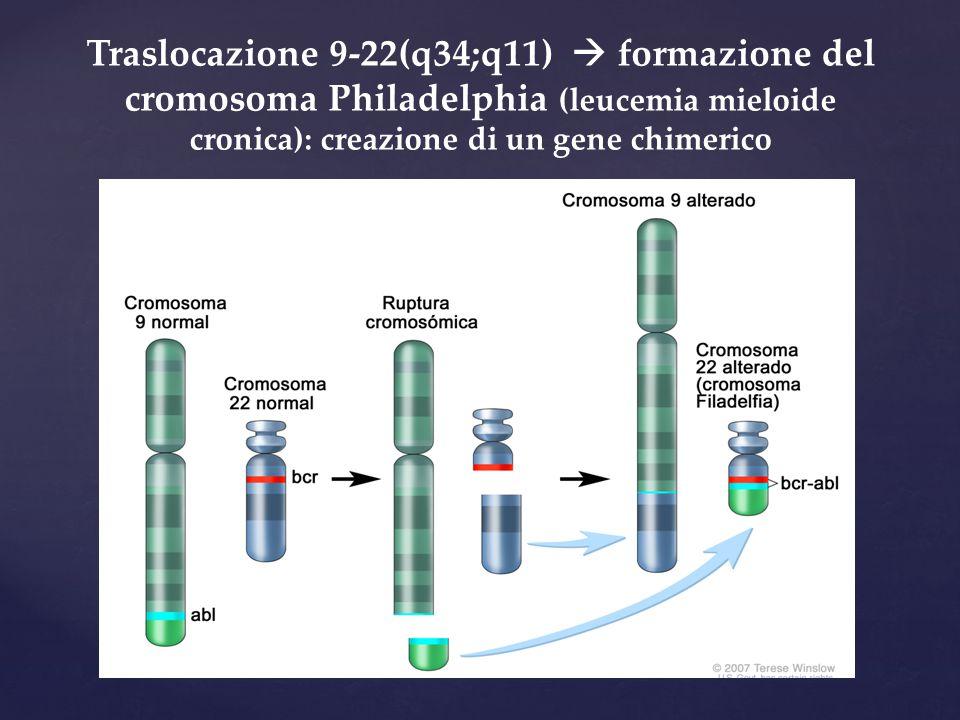 Traslocazione 9-22(q34;q11)  formazione del cromosoma Philadelphia (leucemia mieloide cronica): creazione di un gene chimerico