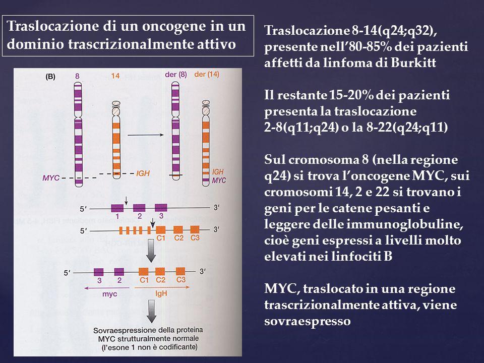 Traslocazione di un oncogene in un dominio trascrizionalmente attivo