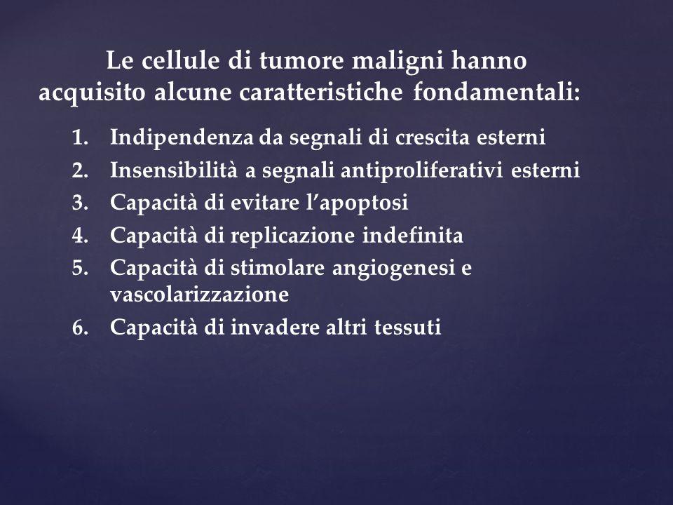 Le cellule di tumore maligni hanno acquisito alcune caratteristiche fondamentali: