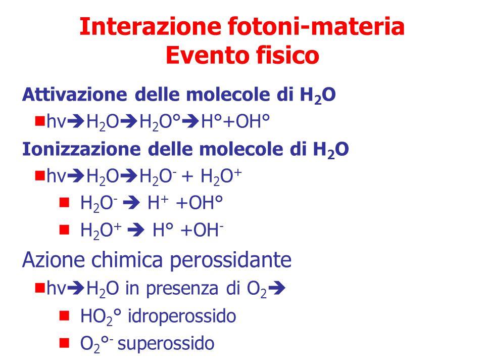 Interazione fotoni-materia Evento fisico