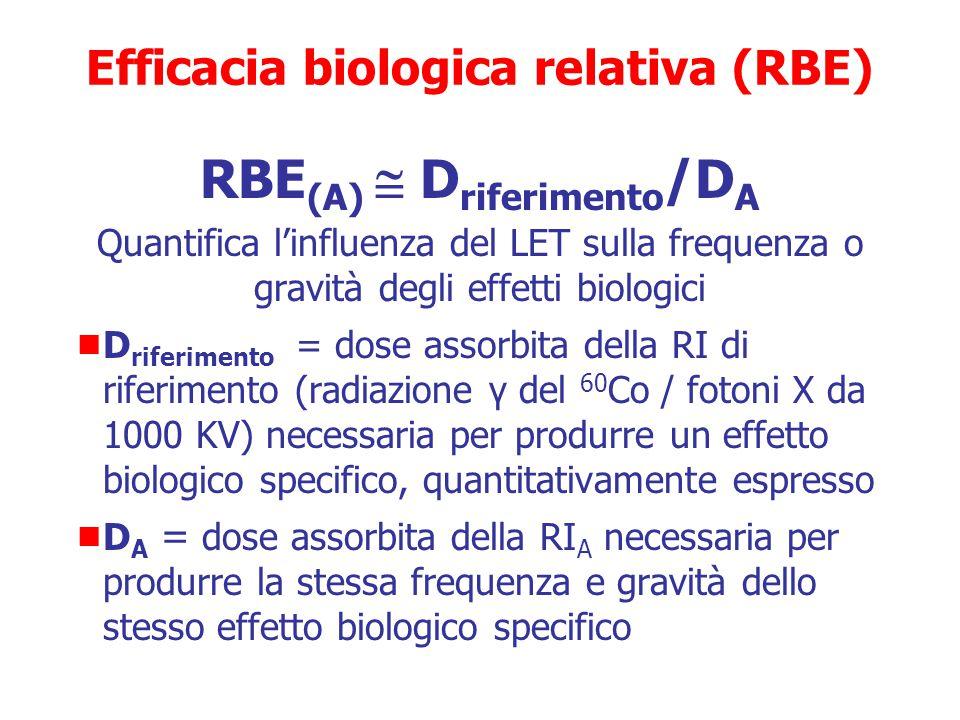 Efficacia biologica relativa (RBE)