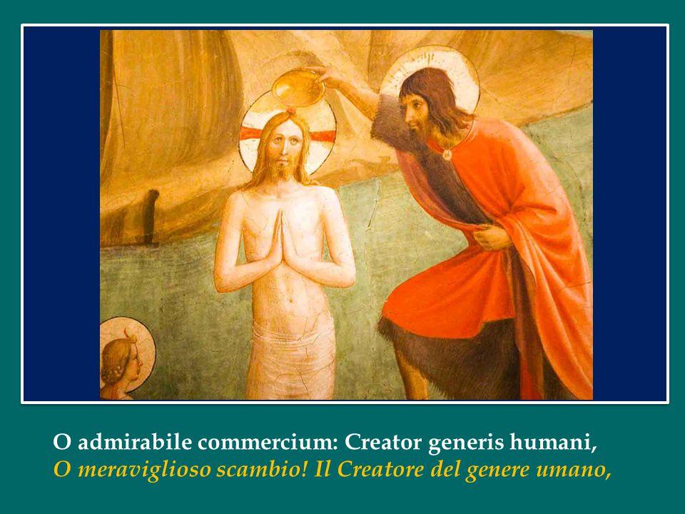 O admirabile commercium: Creator generis humani,