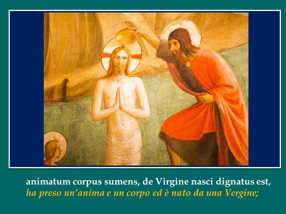 animatum corpus sumens, de Virgine nasci dignatus est,