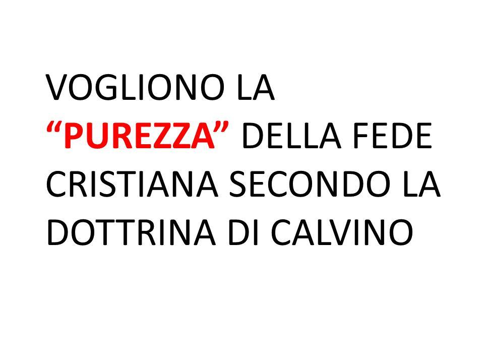 VOGLIONO LA PUREZZA DELLA FEDE CRISTIANA SECONDO LA DOTTRINA DI CALVINO