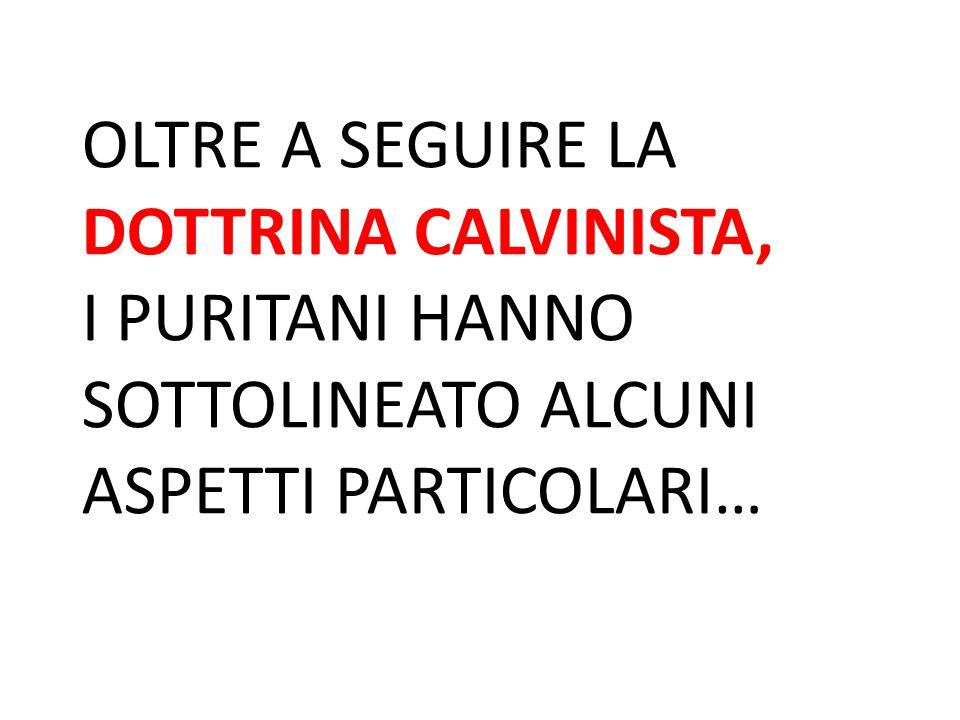 OLTRE A SEGUIRE LA DOTTRINA CALVINISTA,