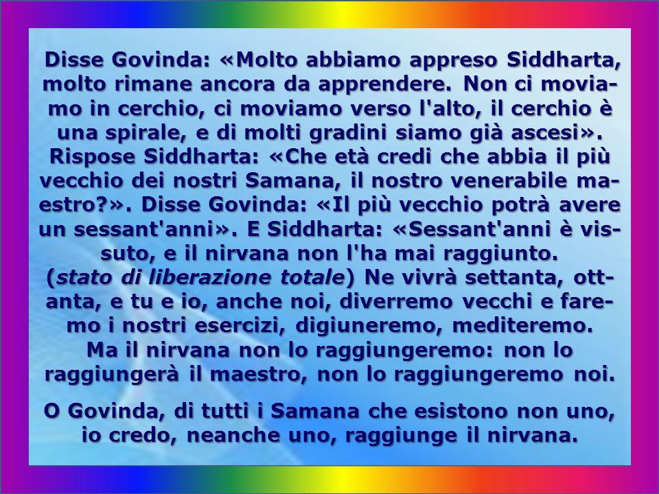 Disse Govinda: «Molto abbiamo appreso Siddharta, molto rimane ancora da apprendere.