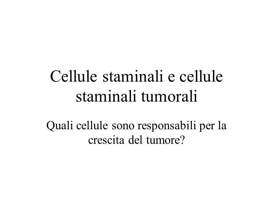 Cellule staminali e cellule staminali tumorali