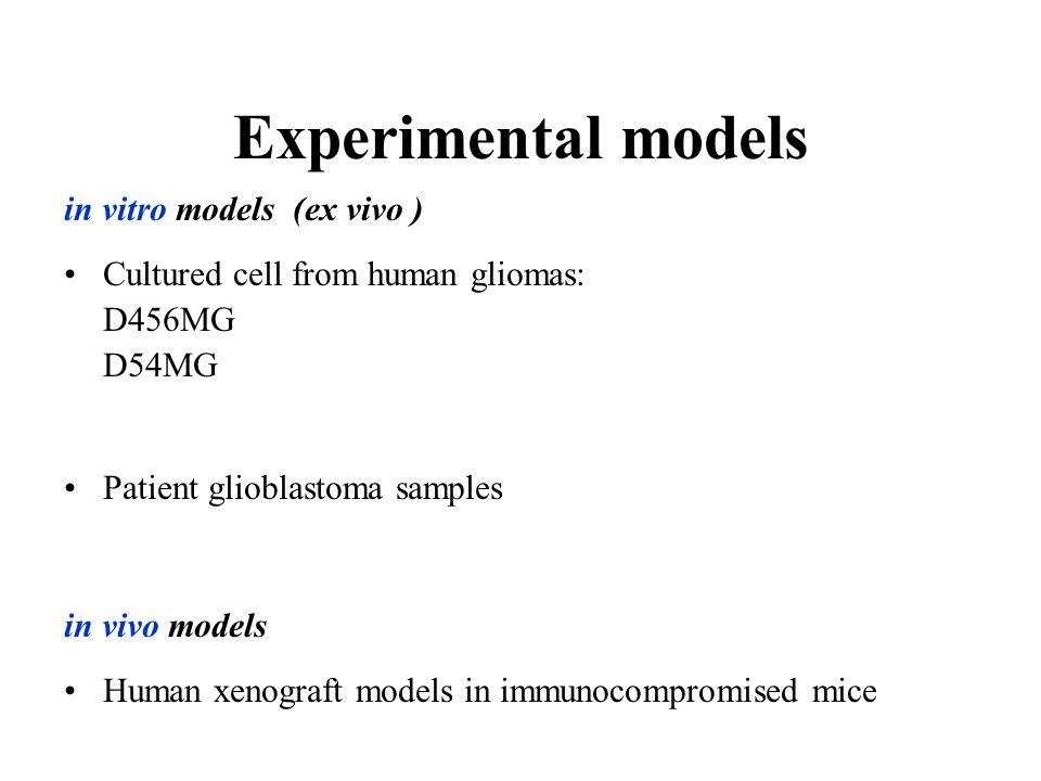 Experimental models in vitro models (ex vivo )