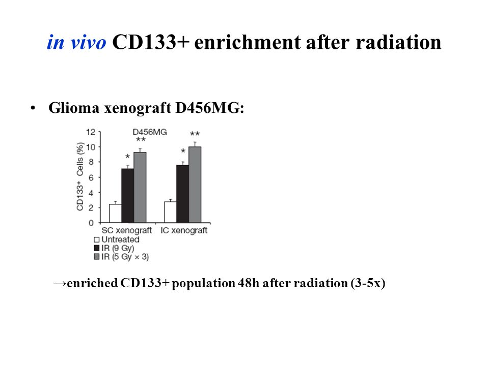 in vivo CD133+ enrichment after radiation