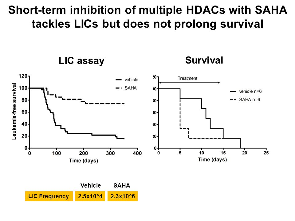 Short-term inhibition of multiple HDACs with SAHA tackles LICs but does not prolong survival