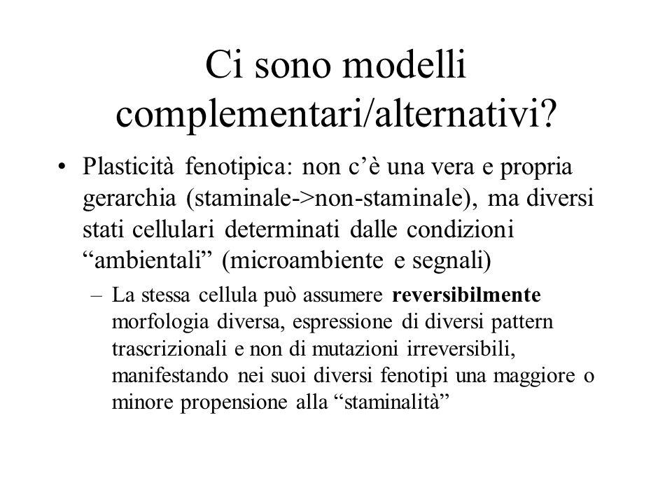 Ci sono modelli complementari/alternativi