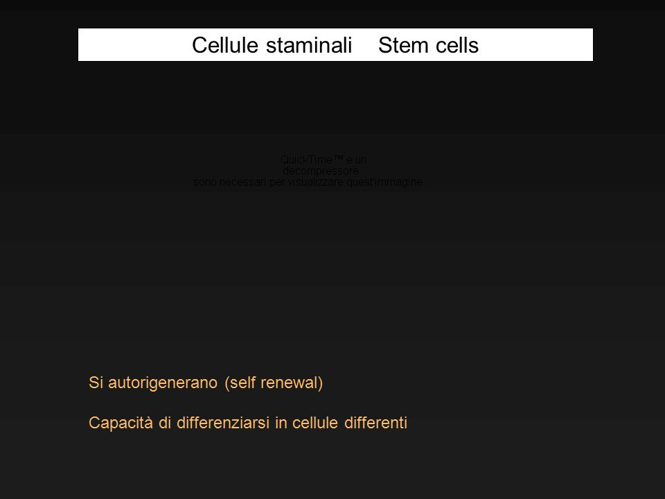 Cellule staminali Stem cells