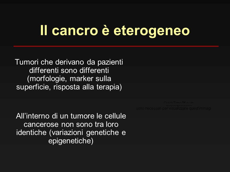 Il cancro è eterogeneo Tumori che derivano da pazienti differenti sono differenti (morfologie, marker sulla superficie, risposta alla terapia)