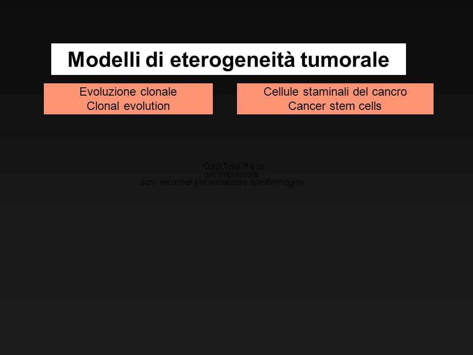Modelli di eterogeneità tumorale