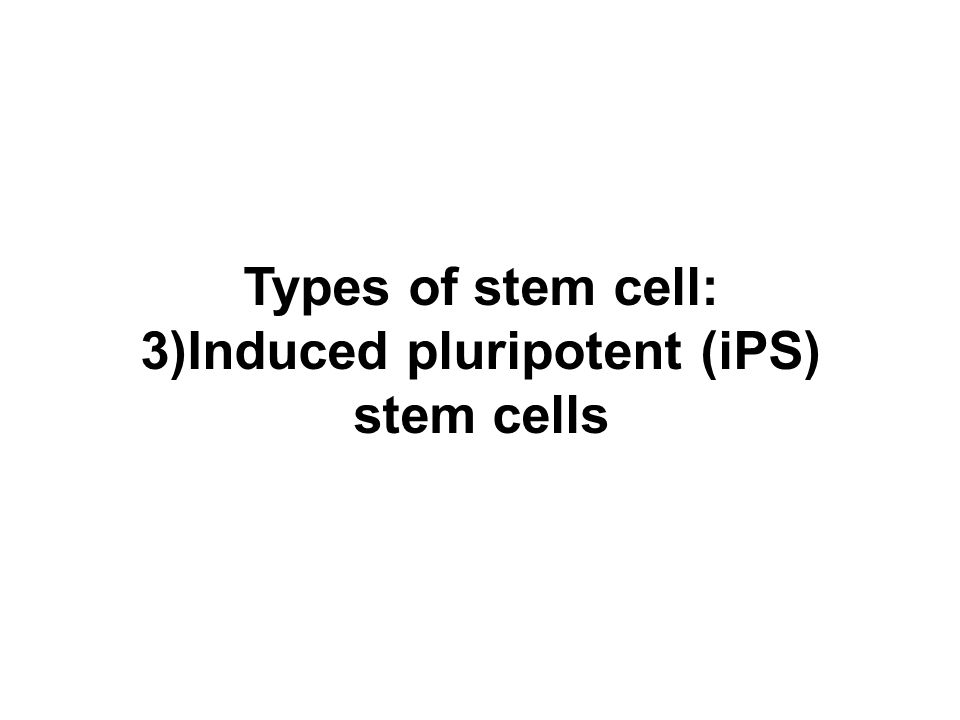 3)Induced pluripotent (iPS)